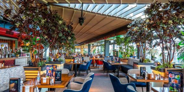 Burrata Italiana Paradise Center